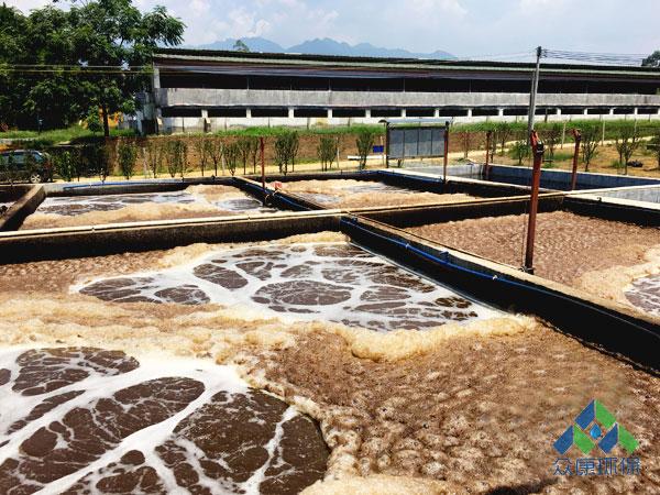 高浓度养殖污水处理系统